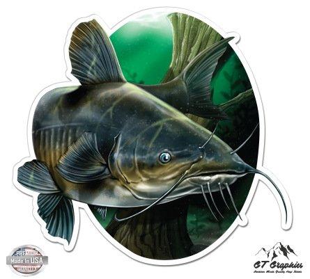 Catfish - 12