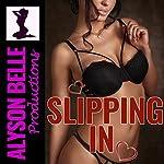 Slipping In: The Virtnet Chronicles, Book 1 | Alyson Belle