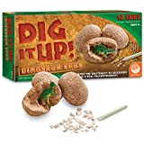Dig It Up! Dinosaur Eggs
