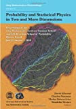img - for Probability and Statistical Physics in Two and More Dimensions (Clay Mathematics Proceedings) book / textbook / text book