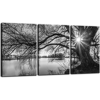 Sea Charm   Canvas Prints Wall Art,Black And White Tree In Sunrise Canvas  Wall
