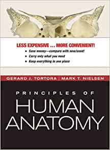 Fundamentals of Anatomy & Physiology, 11th Edition