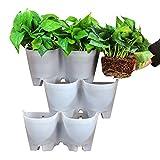 SELF Watering Vertical Wall Hangers with Pots