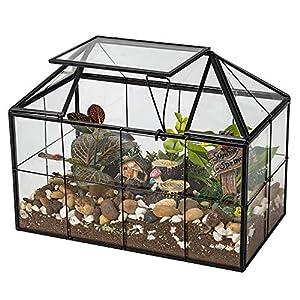 Ferrisland Handmade Succulents Terrarium Flowers Case House Succulents Container Planter for Plants Container Mordern