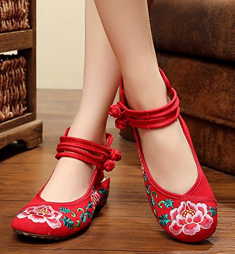 AvaCostume Womens Embroideried Floral Pattern Ankle Strappy Dancing Dress Shoes Red oBvHmMKqBG