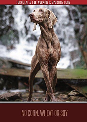 SportDogFood-Canine-Athlete-Formula-Dog-Food-with-Glucosamine-HCL