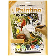 Royal Brush Junior Small Paint by Number Kit, 8.75 by 11.75-Inch, Garden Birds