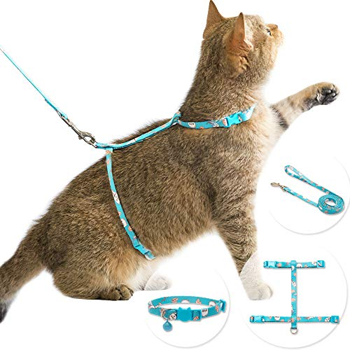 - CHERPET Cat Harness and Leash with Breakaway Collar - Escape Proof Adjustable for Outdoor Walking, Safety Buckle Durable Blue Nylon Cute Personalized Printed Harnesses for Puppy Kittens Small Animals