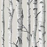 NuWallpaper NU1650 Birch Tree Peel and Stick Wallpaper