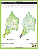 Historical Analysis of Wetlands and Their Functions for the Nanticoke River Watershed: a Comparison Between Pre-Settlement and 1998 Conditions, U. S. Fish and Wildlife Service Staff, 1490582924