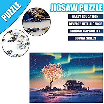 Memoryee 1000 Piece Jigsaw Puzzles for Adults Kids, Aurora Large Jigsaw Intellectual Educational Game Difficult and Challenge/AA: Toys & Games