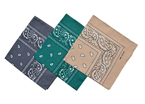 Raylarnia Paisley 3 piece Assorted Cowboy Bandanas Cotton 22 x 22 inch-Gray/Kelly/Beige