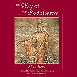 #5: The Way of the Bodhisattva: Shambhala