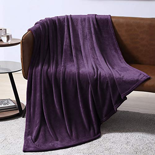 EXQ Home Twin Size Purple Fleece Blanket Cozy Microfiber Luxury Flannel Throw Blankets for Couch(Lightweight,Super Soft&Warm,Non Shedding) ()