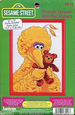 Janlynn Sesame Street Friends Forever Big Bird Counted Cross Stitch Picture Kit (Sesame Street Cross Stitch)