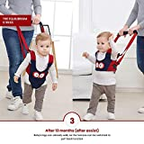 Baby Walking Harness - Handheld Kids Walker Helper