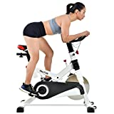Finer Form Gym-Quality Indoor Bike with LCD Monitor and Shock Absorption, White, 30LB Flywheel Finer Form Fitness