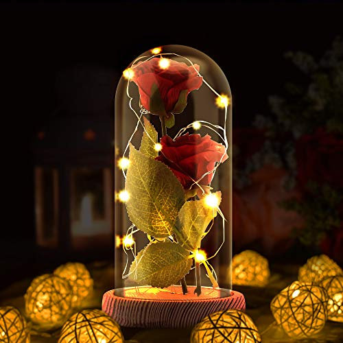 Enchanted Rose Lamp, Beauty and The Beast Rose in Glass Dome, 20 Led Light 2pcs Red Silk Rose Flower on Wood Base, Romantic Forever Gift for Mothers' Day, Birthday Party Wedding Anniversary Day Decor