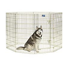 "MidWest Foldable Metal Exercise Pen / Pet Playpen, Gold Zinc w/ door, 24""W x 48""H"