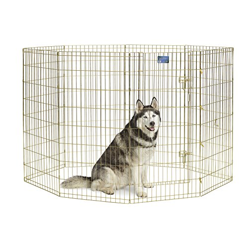 MidWest Foldable Metal Exercise Pen / Pet Playpen, Gold Zinc w/ door, 24