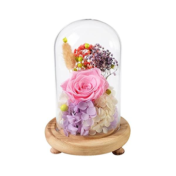 FORUSKY Beauty and The Beast Preserved Fresh Flower Glass Immortal Rose Flower Gift for Mother's Day Lover Birthday, Valentines Gifts,Wedding Pink