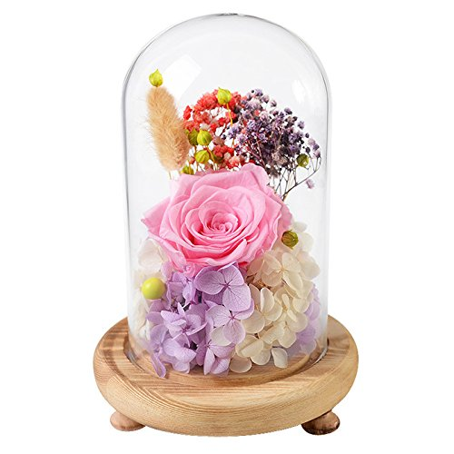 - FORUSKY Beauty And The Beast Preserved Fresh Flower Glass Immortal Rose Flower Gift for Mother's Day Lover Birthday,Anniversary Gifts,Valentines Gifts,Wedding Anniversary Gift - Pink