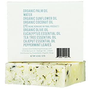 Eucalyptus Tea Tree Hemp Soap Bar with Peppermint Leaves | Certified Organic Ingredients, Vegan, GMO Free | Face & Body Wash for Combination and Oily Skin, Acne, Eczema