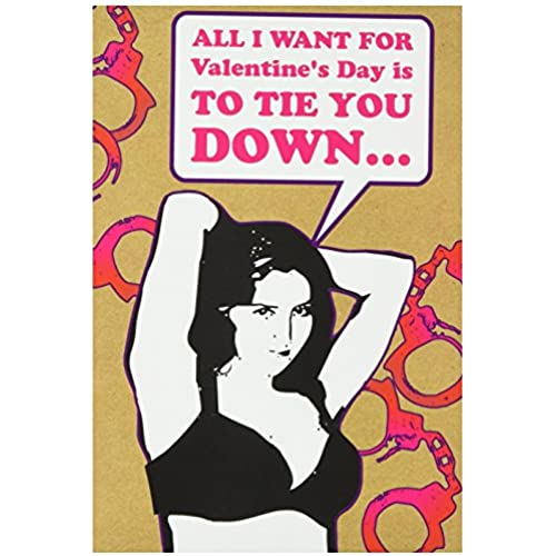 NobleWorks 7384 Tie You Down Funny Valentine's Day Unique Greeting Card, 5 x 7 Sales