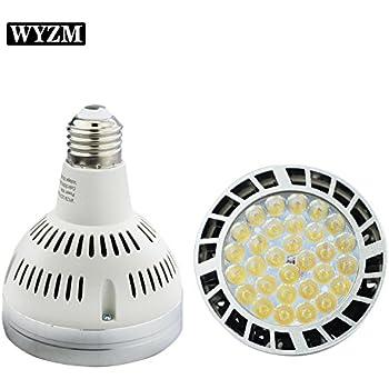 Amazon Com 120v 65w White Color Led Pool Light Bulb Fit