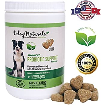how to add digestive enzymes to dog food