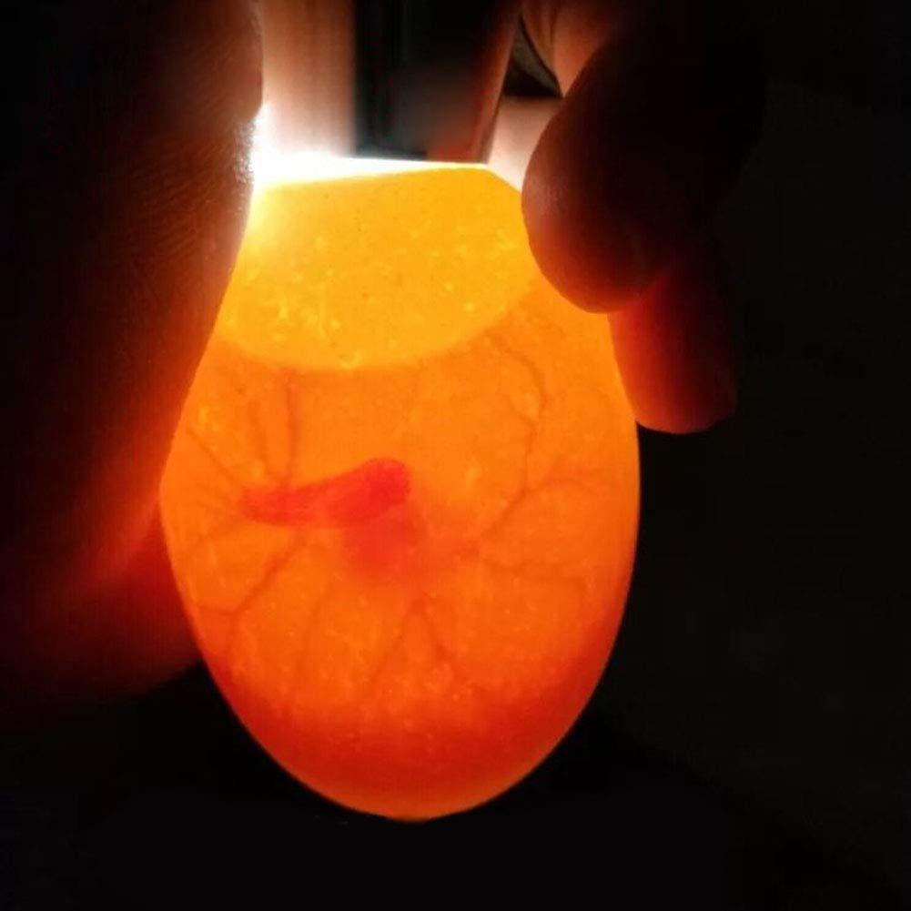 Eierdurchleuchter Lifebasis Kabellose Eierdurchleuchtungs-Lampe Batteriebetriebener kabelloser Eierdurchleuchter Monitor Inkubator Embryo mit hellem k/ühlem LED-Licht f/ür alle Eiertypen