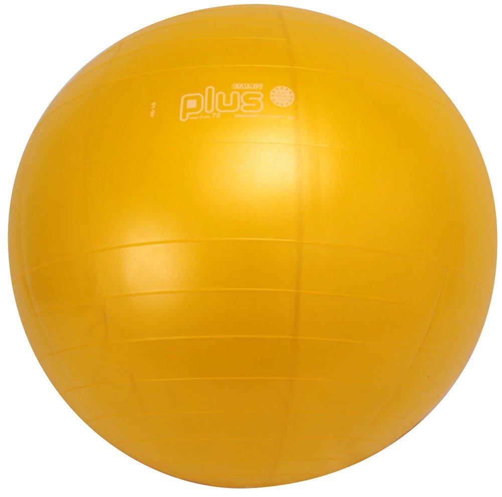 ダンノ (Danno) ギムニクカラーボールplus 75 cm d5423y