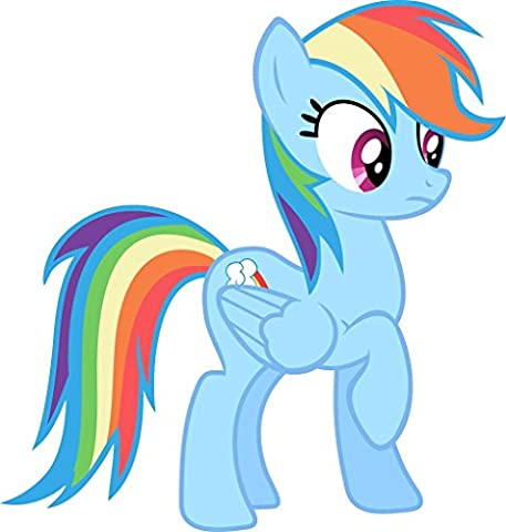 My Little Pony Rainbow Dash Wall Sticker Home Decor Art Mural 002 Kids C841, Large (Rainbow Dash Wall)