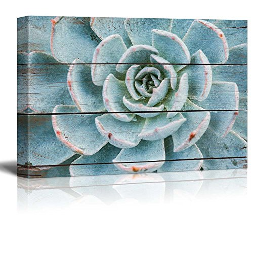 wall26 Green and Blue Succulent - Rustic Floral Arrangements - Pastels Colorful Beautiful - Wood Grain Antique - Canvas Art Home Decor - 24x36 inches