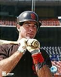Autographed Steve Garvey Photo - 8x10 W COA W BAT - Autographed MLB Photos