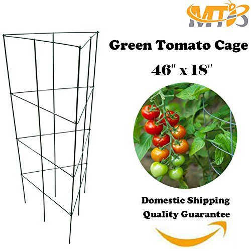 MTB Green Triangular Folding Tomato Cage Plant Support Tower 18 inch by 46 inch, Pack of 1 set (Also Sold as Pack of 10 (Cheap Tomato Cages)