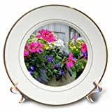 3dRose Danita Delimont - Flowers - Flowers in window boxes, Nantucket, Massachusetts, USA - 8 inch Porcelain Plate (cp_279042_1)