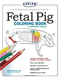 Fetal Pig Coloring Book: A Laboratory Manual