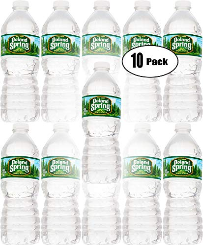 Poland Spring 100% Natural Spring Water, 16.9 Bottle (Pack of 10, Total of 169 Fl Oz) ()