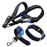 Premium Quality No Pull Dog leash Harness with Collar, Heavy Duty Leather-nylon Dog Collars Harnesses&Leashes for Small/Medium/Large Dogs of High Durability,Perfect for Training/Walking Dogs (L, Blue)