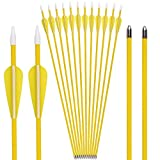 Elong Fiberglass Arrows Archery 24 26 Inch Yellow Shooting Targeting Recurvebow Compound Bows for Youth Kids Children Beginner Safe Point