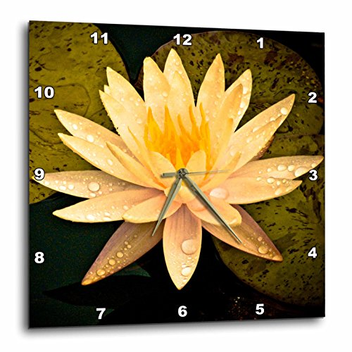 3dRose  Yellow Lotus Flower-Wall Clock,