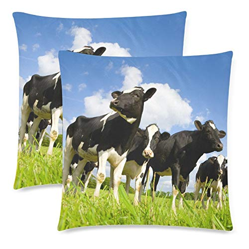 (Royalreal Custom Holstein Cow in The Meadows Throw Pillow Cover Decorative Durable Cushion Cover Set of 2 18x18inch Soft Linen Pillowcase for Sofa Couch Bedroom Funny Animal in Blue Sky)