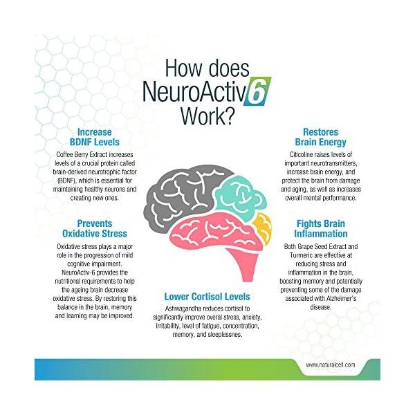 NeuroActiv6 – Nootropic Superfood Supplement – Improve