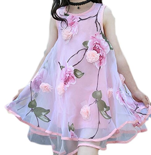 Yayu Little Girl Sundress Dress Lovely Flower Print Irregular A-Line Mesh Dress Pink 8T by Yayun