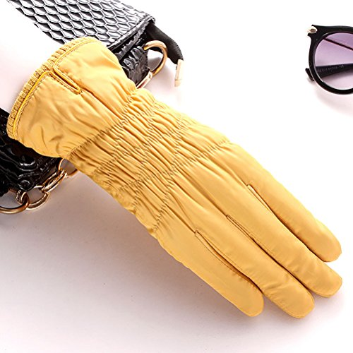 plus outdoor screen gloves Yellow Winter warm driving feather thick cashmere ladies touch cold Zhhyltt cotton wZ8YOxZq