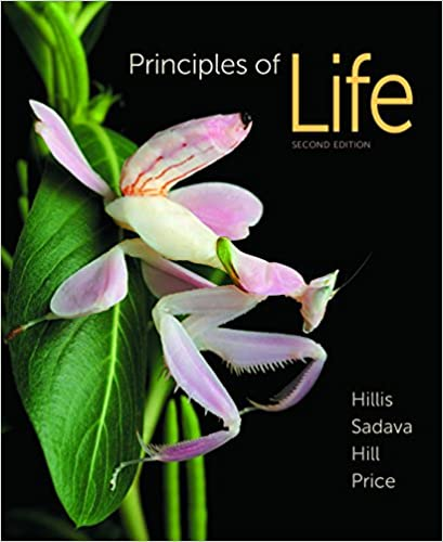 Principles of life second edition 2 david m hillis david principles of life second edition 2 david m hillis david sadava richard w hill mary v price amazon fandeluxe Gallery