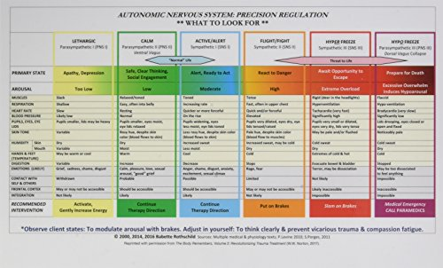 Autonomic Nervous System Table: Laminated - Laminated System