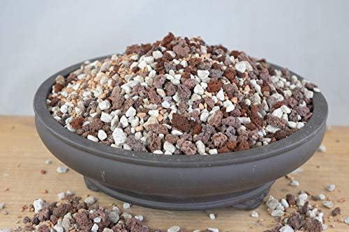 Soil Soil Amendments Home Garden 10 Cups Inorganic Soil Mix Bonsai Soil Large Particle Pumice Turface Lava Topografiapv Cl