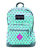 JanSport City Scout Laptop Backpack - Best Reviews Guide